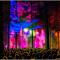 Top Irish festivals and Events